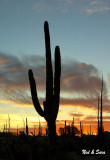 Catavina sunrise