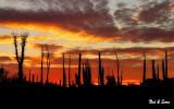 sunrise -  Catavina boulder field