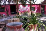 shady courtyard  in San Ignacio