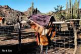 working saddle