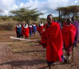 Masai warriors complete with spears