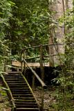 Pirenópolis - Vagafogo