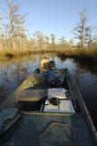 Sunrise on a Very Cold Bayou LaBranche