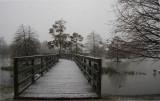 Beginning of the Snowstorm of December 11, 2008