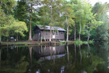 Sugar Shack in the Middle of the Swamp