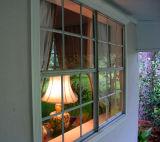 Reflection in My Window