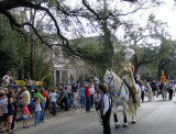 The Riding Lieutenants of Krewe of Mid City