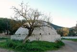 mezarlık (2)