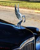 Packard - 0457.jpg