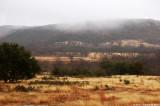 December 28th, 2010 - Cloudy Feild - 1099.jpg