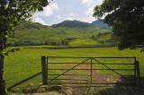 A View Near Fell Foot Farm