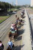Rodeo Parade