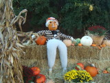 scarecrows_and_friends