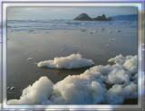 Foam and Seal Rock