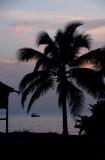 A Caribbean Night