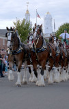 The Big E: The Clydesdales