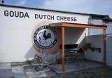 Gouda Dutch Cheese