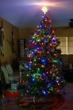 O Christmas Tree*