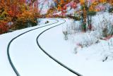 Winter/ Autome