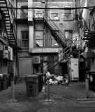 Back alley .jpg