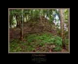 Unexcavated Ruin