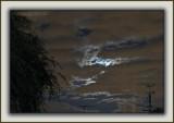 Stormy Lunar Luminescence