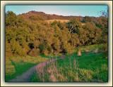 Entrance To Musch Trail - Topanga