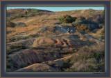 Long Shadows, Red Toyon Berries, A Steep Trail And Friends - Santa Monica Mountains
