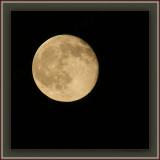 Harvest Moon Simple '09