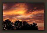 The Rare Santa Monica Mammatus At Sunset