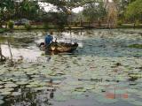 Binh Quoi - DSC00061