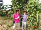 Nam Cat Tien - DSC00076