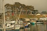 Fishing Boats at Morro Bay