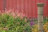 Backyard garden in Cambria