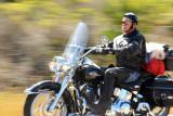 Harley rider heads up the Big Sur Coast