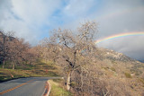 Rainbow and General's Highway