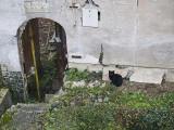Neighbourhood - Miro