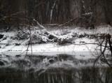Winter's Black Water-Shirley
