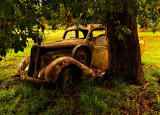 1st Old rusted pickup by Dennis