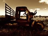 Old truck in field by Dennis