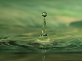 Green Water - Drummer