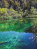 Lake Plitvice- Miro