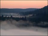 fog on oberg - brent