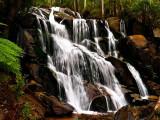 Toorongo Falls by Dennis
