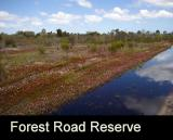 Forest Road Reserve