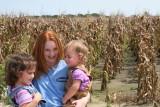 Corn Harvest - September 2008