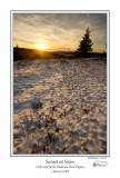 Sunset on Snow.jpg