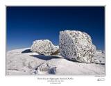 Rime Ice Algonquin Summit Rocks 1.jpg