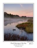 Placid Morning Otter Bay.jpg