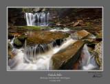 Elakala Falls 1110 P1.jpg